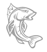 Rannakalur-kala